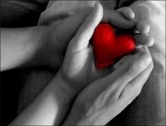 amore-mani.jpg